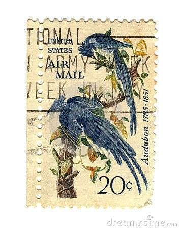 Old postage stamps from USA with two birds - Audubon