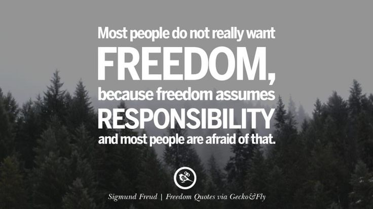 17 Best Quotes About Freedom On Pinterest
