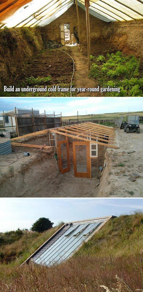 Top 10 Cold Frame-Tipps für Herbst- und Wintergemüse-Gartenarbeit – Proud Home Deco