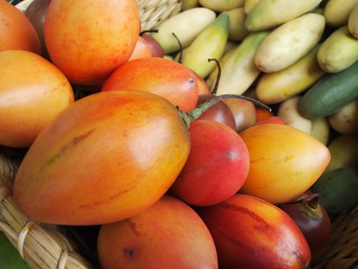 """It´s name means """"tree tomato"""" in Quechua, but in other parts of the world its known as Tamarillo. Its texture and flavor are similar to the tomato's. There are a few varieties and we enjoy them in spicy sauces, desserts, compotes, etc. They can be eaten raw or cooked."""