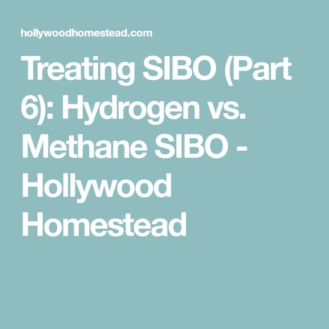Treating SIBO (Part 6): Hydrogen vs. Methane SIBO - Hollywood Homestead