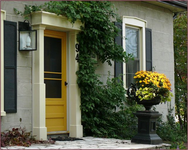 Mustard door and coordinating chrysanthemums via not for Front door yellow paint