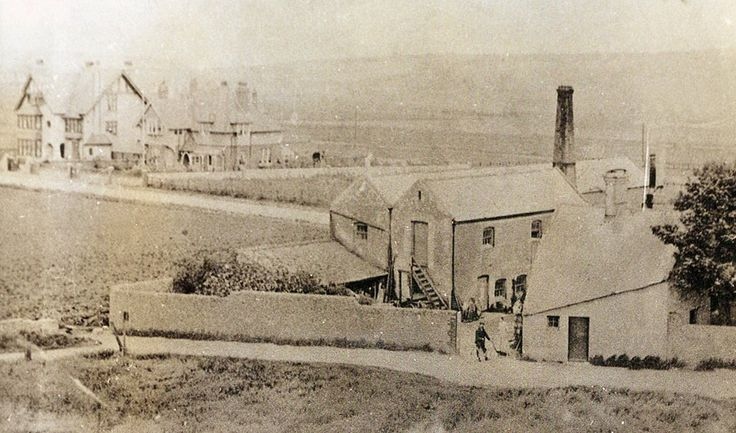 This is Mill House Seaford corner of Sutton Road and Milldown Road ( My grandparents Albert & Mary French lived here from 1898 to about 1928 they had seven children six of them born here including my father David French two of them standing in the gateway ) The large chimney is a Steam Mill which took over from the windmill.