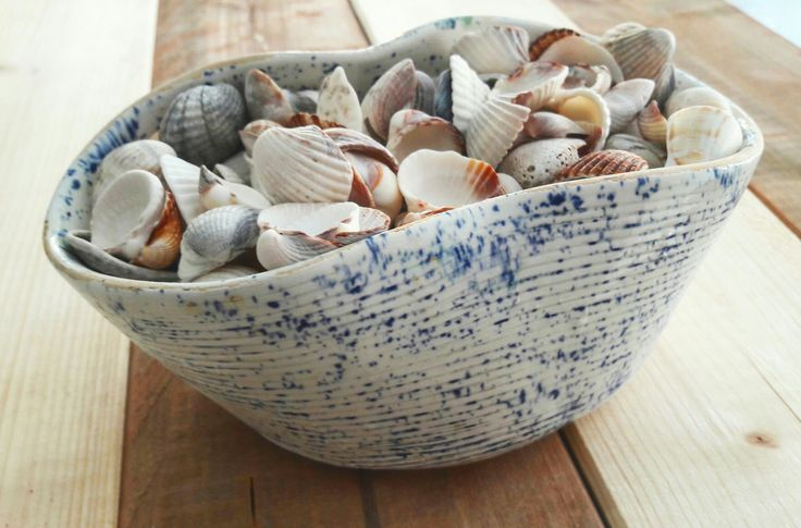 Lots of sea shell ☉  Ceramic