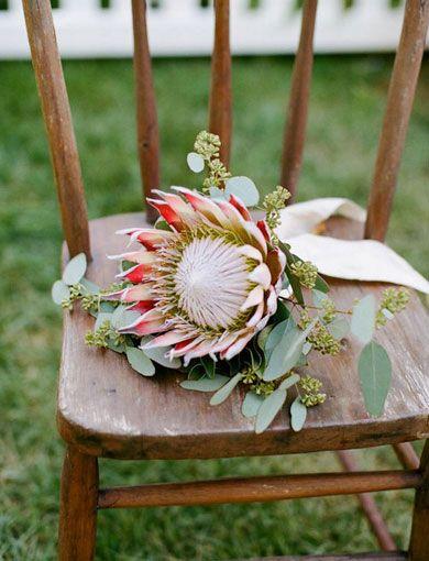 Google Image Result for http://1.bp.blogspot.com/-J0RdnZZUa4k/TwGd8t3hsRI/AAAAAAAAB0k/tqvsIZXoqlg/s640/flower_protea_eucalyptus.jpg