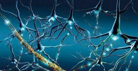 Νέα στοιχεία για την ΣκΠ από την μελέτη Across: http://biologikaorganikaproionta.com/health/249025/