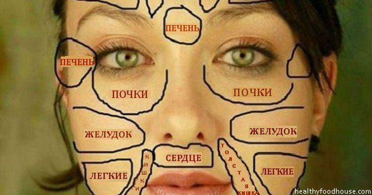 Китайцы считают, что все части лица напрямую связаны с конкретными внутренними органами. Кожа – самый большой по площади орган нашего организма. На нем могут проявляться многочисленные внутренние проблемы...