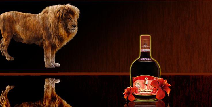 Sangre de Leon #lion #blood #liqueur #agave #oaxaca #mayordomo