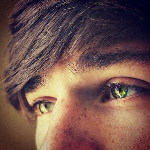 I have never ever found a picture that is similar to my second main character, Sam. He's too unique, I guess. But he has brown hair and green eyes like this. No freckles, though.
