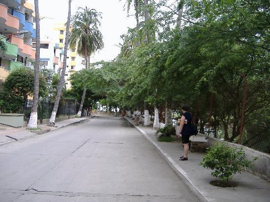 calle de Rodadero
