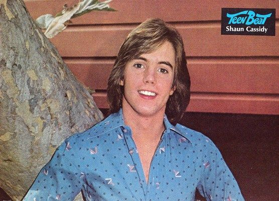 96fa72b6e1128e ... The Shaun David Cassidy: 145 Best Shaun Cassidy Images On Pinterest