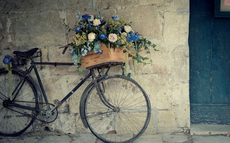 bicycle with flower hd wallpaper
