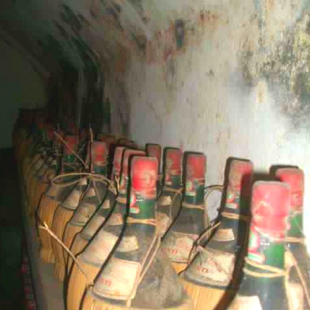 Chianti wine bottles collecting dust in the cellar at castello del trebbio.