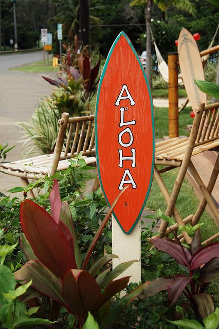 Living Aloha: What Does It Mean - Aloha is the most Hawaiian word. In the Hawaiian language, it can mean hello or goodbye. It also means love and affection.