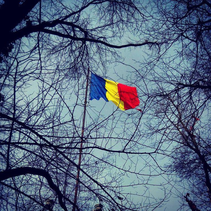 Albastru la băț #tricolor #romania (at Varful Tâmpa)
