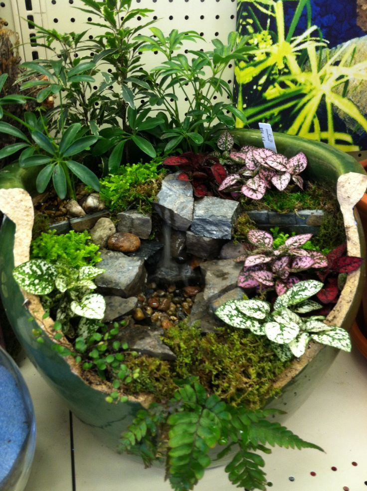Water Feature Designed By Kristin Middleton .