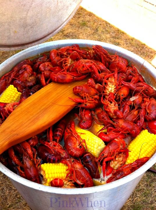 Recipe for New Orleans Crawfish Boil - I promise you'll enjoy this cajun delicacy.