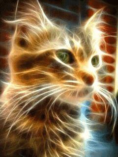 Logo animé gratuit - Fire Cat