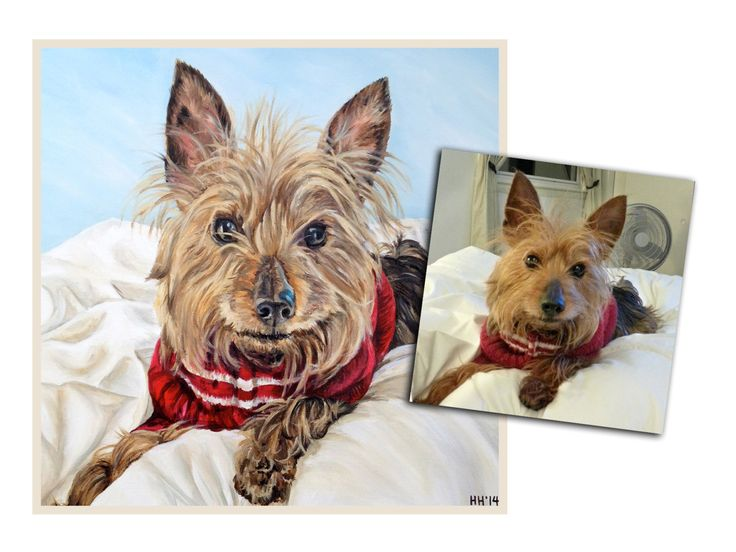 custom dog portrait pet portrait dog painting original oil painting yorkie art great gift 16x16 made to order by Heather Hughes by SouthPawPaintings on Etsy