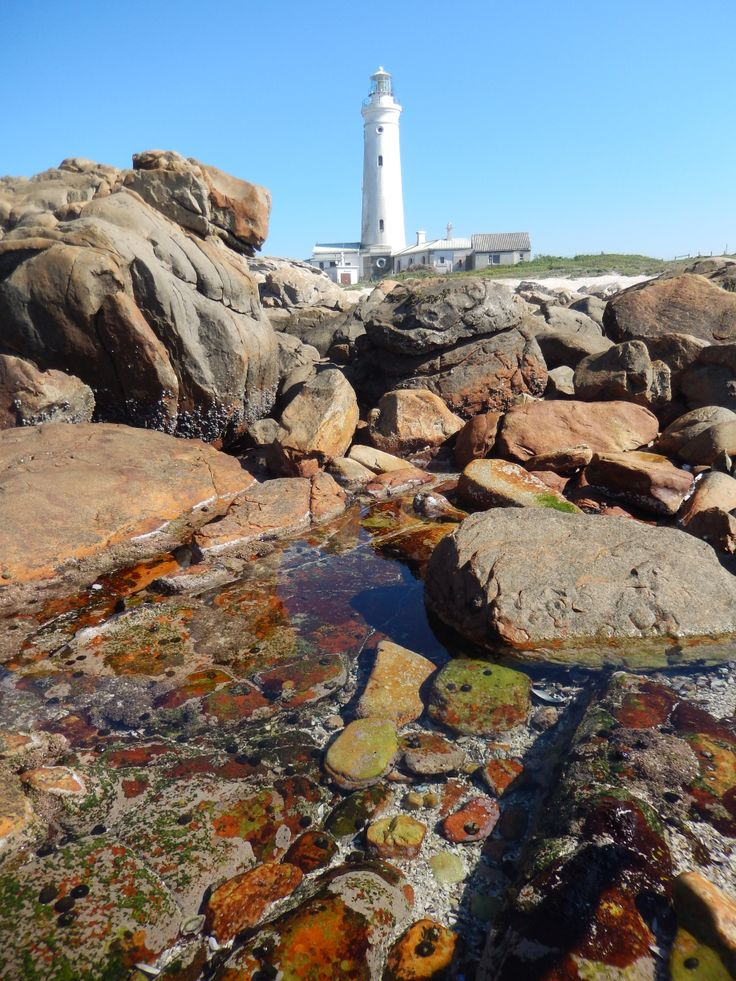 The lighthouse at Cape St. Francis. Some really lovely rock pools in the area.