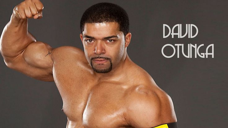 WWE David Otunga Wallpaper  #David Otunga Images #David Otunga Photos #David Otunga Pics #David Otunga Pictures HD #David Otunga Wallpaper #David Otunga Wallpapers #WWE David Otunga Wallpaper