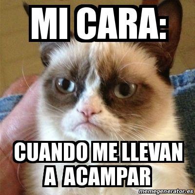 Meme Grumpy Cat - MI CARA: CUANDO ME LLEVAN A ACAMPAR - 15814277