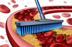 7 Lebensmittel, die deine Arterien natürlich reinigen