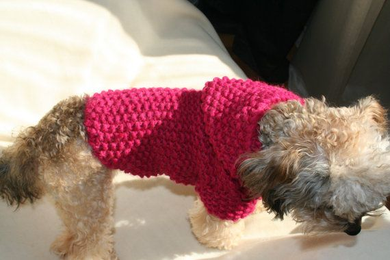 Dog Hoodie Hand knit Sweater in Magenta Pet Clothing Dog Clothes Button Dog Sweater BubaDog