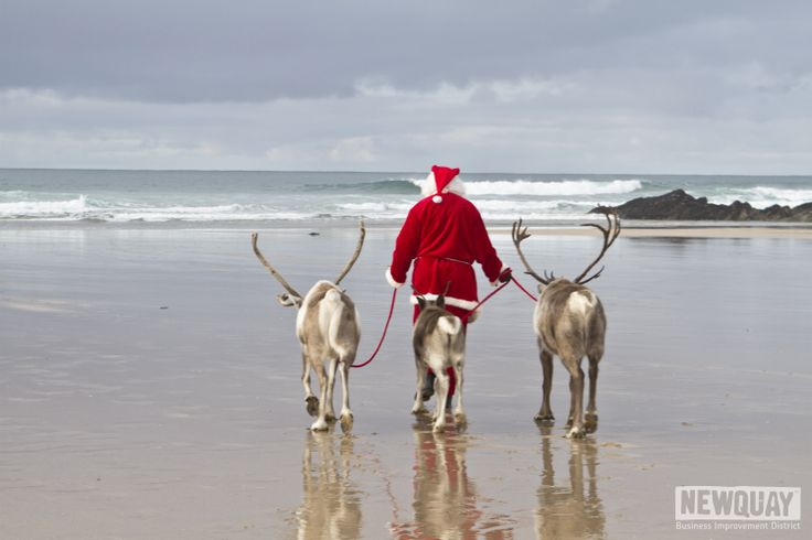 Santa and his reindeer having a break in Newquay before they start their Christmas work! #Cornwall