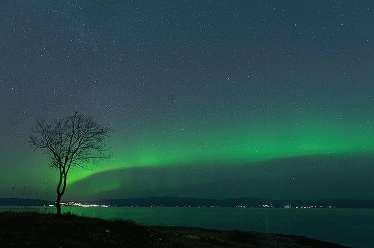 Light & Sound: Aurora motion