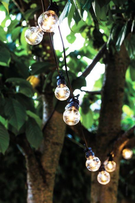 Guirlande intérieure et extérieur ampoules noires & transparentes