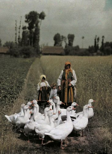 Girls herding their geese