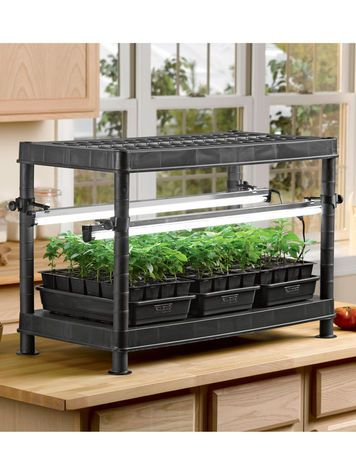 9 best images about kitchen gardening on