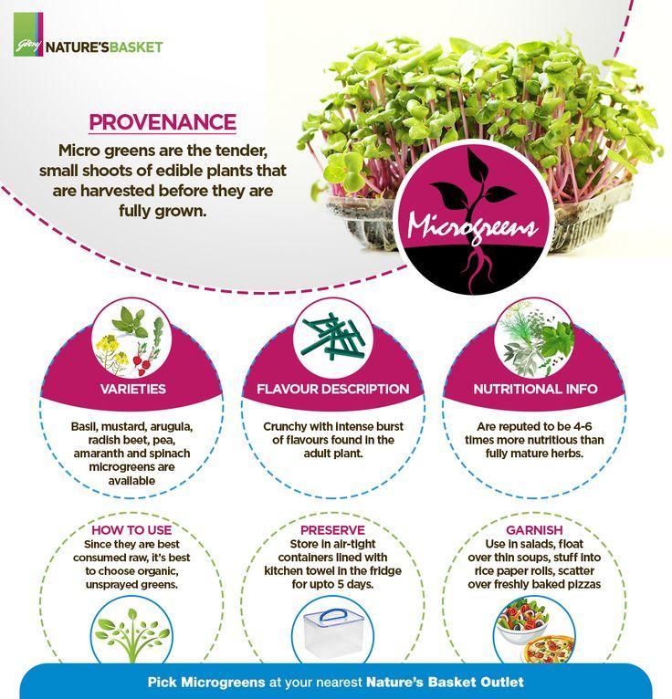 Microgreens Infographic