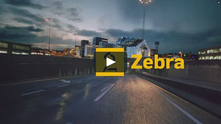 Toxic did a full rebrand of TV2 Zebra together with SDG, TV2 and Netron, these are the new idents.  Director: Knut A. Helgeland Art direction: Knut A. Helgeland,…