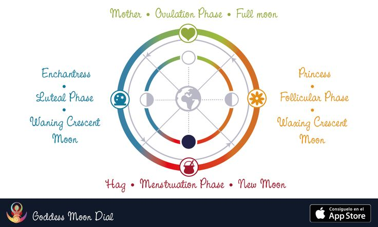 Diagram of female archetypes and moon phases