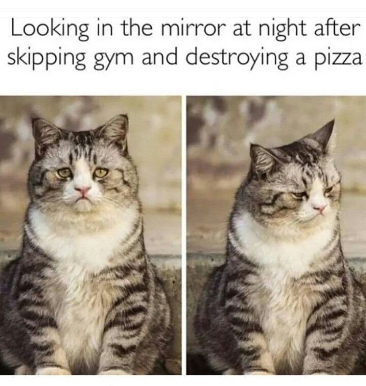 nice Fitness Humor... by http://www.dezdemonhumor.space/gym-humor/fitness-humor/