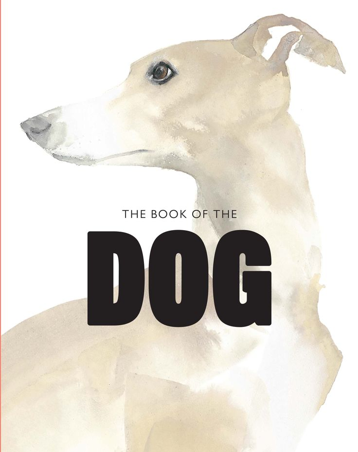 Cover Of The Book Dog Dogs In Art By Angus Hyland And Kendra