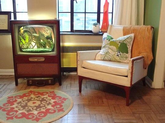 10 best images about old tv fish tank aquariums on for Antique thai cuisine san diego
