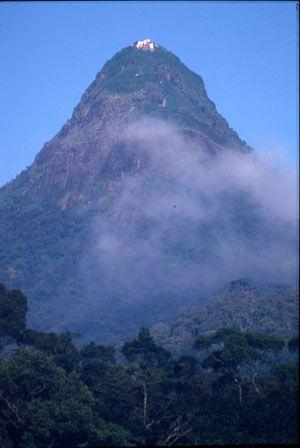 Adam's peak, Sri Lanka, http://www.naturescanner.nl/azie/sri-lanka/activiteiten/adams-peak-sri-lanka/47