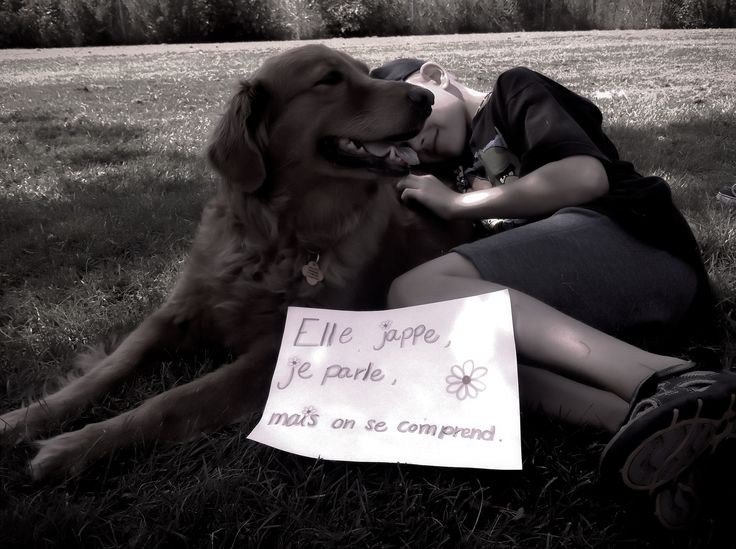 Dog  Golden Retriever  ❤ Animal Assisted therapy   Charlotte et son jeune ami autiste