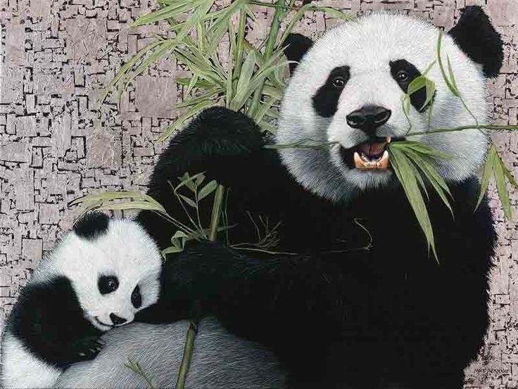 Giant Pandas, Oil and Silver Leaf on Canvas, 90cm by 120cm, (2015) by Marc Alexander