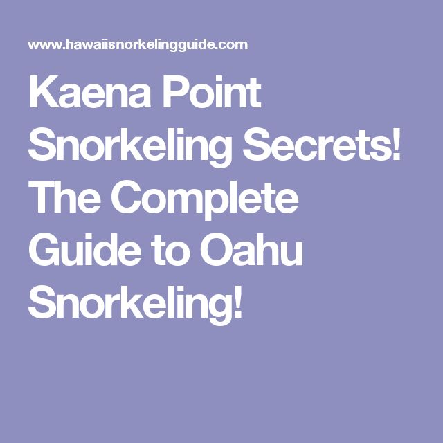 Kaena Point Snorkeling Secrets! The Complete Guide to Oahu Snorkeling!