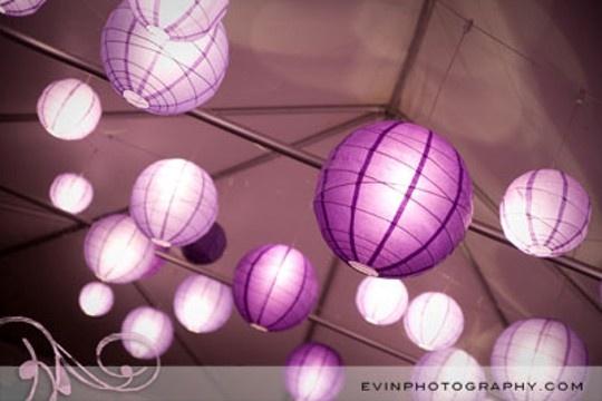 Purple Paper Lanterns