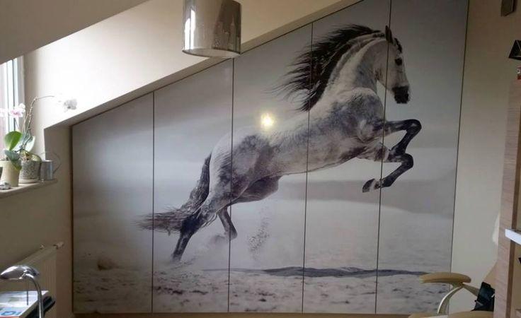 Szafa - koń