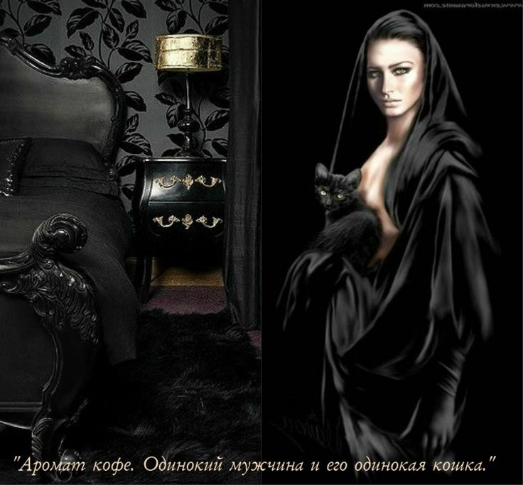 """Виолетта Вальмонд. Роман: """"Аромат кофе. Одинокий мужчина и его одинокая кошка."""""""