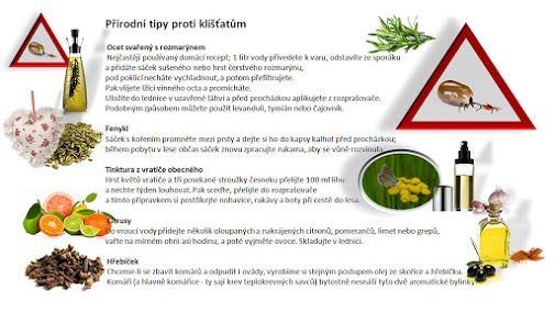 Koření pro dobré vaření a zelené bylinky – Sbírky – Google+