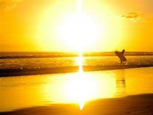 Pro Surf Camp