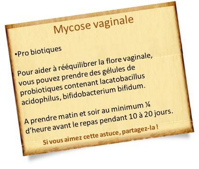 mycose vaginale probiotiques