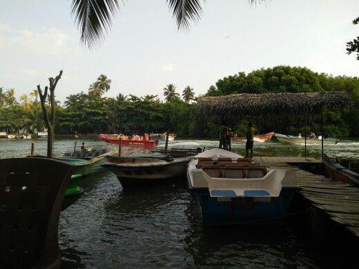 Madu river boat safari and fish massage therapy